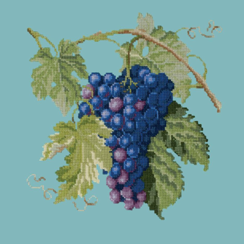 Grapes Needlepoint Kit Elizabeth Bradley Design Duck Egg Blue