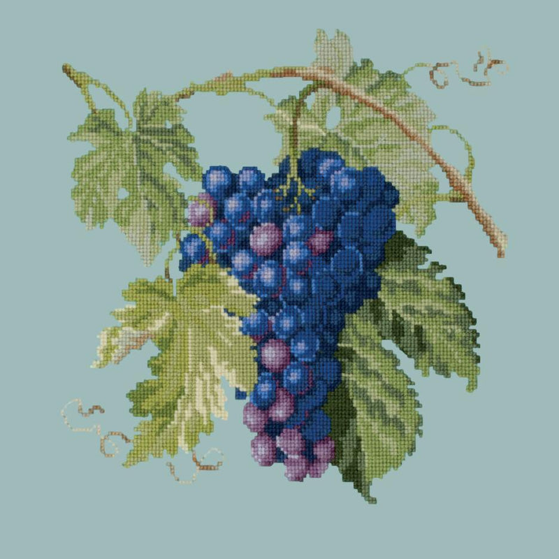 Grapes Needlepoint Kit Elizabeth Bradley Design Pale Blue