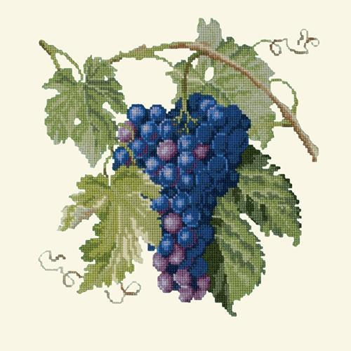 Grapes Needlepoint Kit Elizabeth Bradley Design Winter White