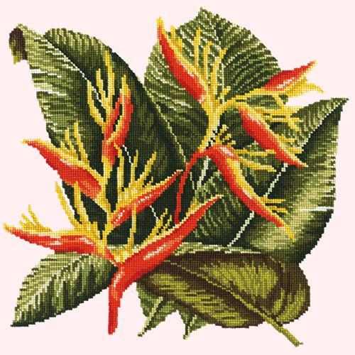 Heliconia Needlepoint Kit Elizabeth Bradley Design Cream