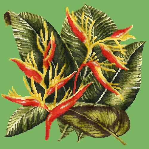 Heliconia Needlepoint Kit Elizabeth Bradley Design Grass Green