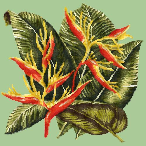 Heliconia Needlepoint Kit Elizabeth Bradley Design Pale Green