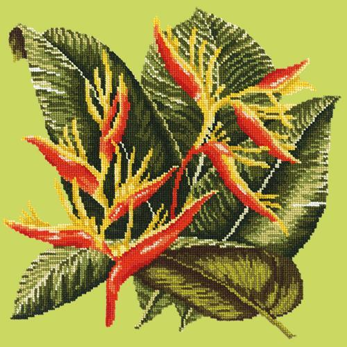 Heliconia Needlepoint Kit Elizabeth Bradley Design Pale Lime