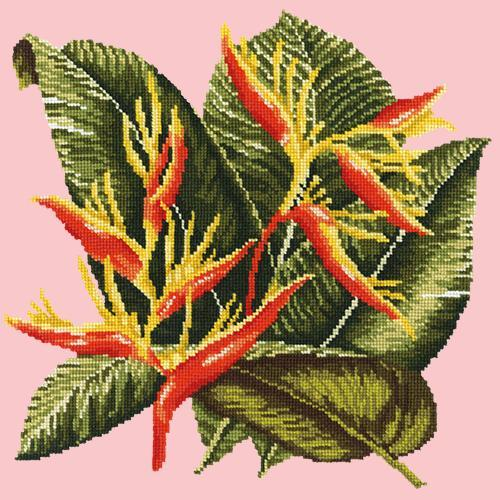 Heliconia Needlepoint Kit Elizabeth Bradley Design Pale Rose