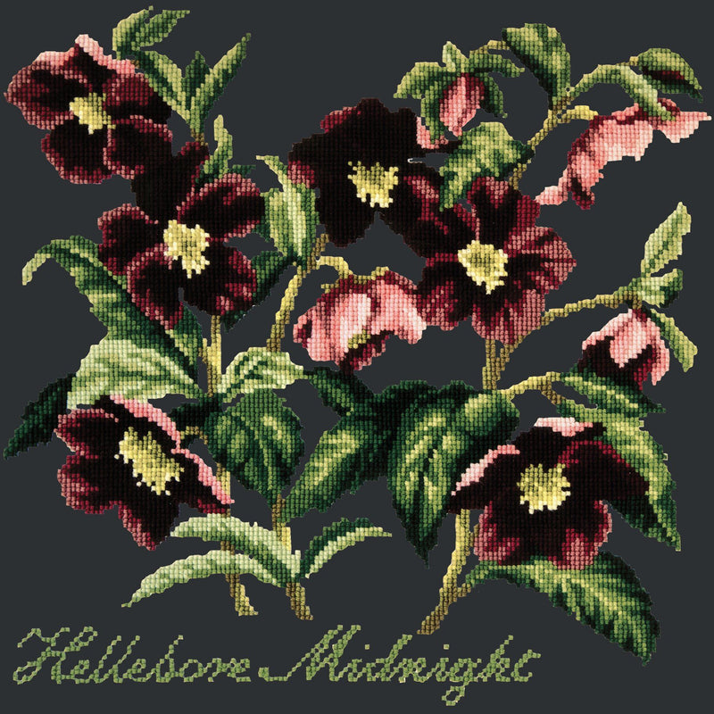 Hellebore Midnight Needlepoint Kit Elizabeth Bradley Design Black