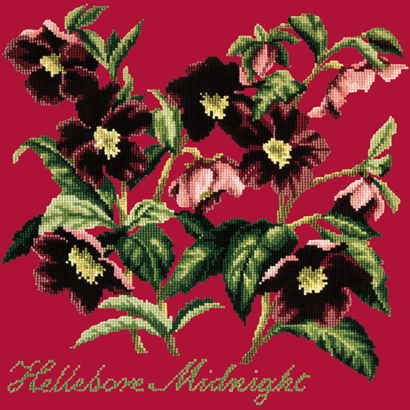 Hellebore Midnight Needlepoint Kit Elizabeth Bradley Design Bright Red