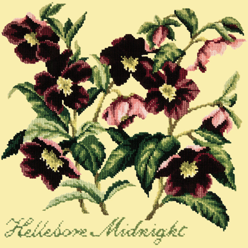 Hellebore Midnight Needlepoint Kit Elizabeth Bradley Design Butter Yellow