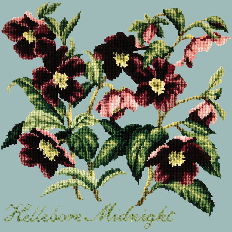 Hellebore Midnight Needlepoint Kit Elizabeth Bradley Design Pale Blue