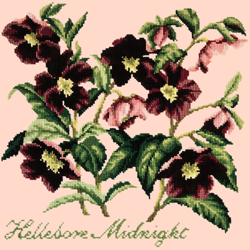 Hellebore Midnight Needlepoint Kit Elizabeth Bradley Design Salmon Pink