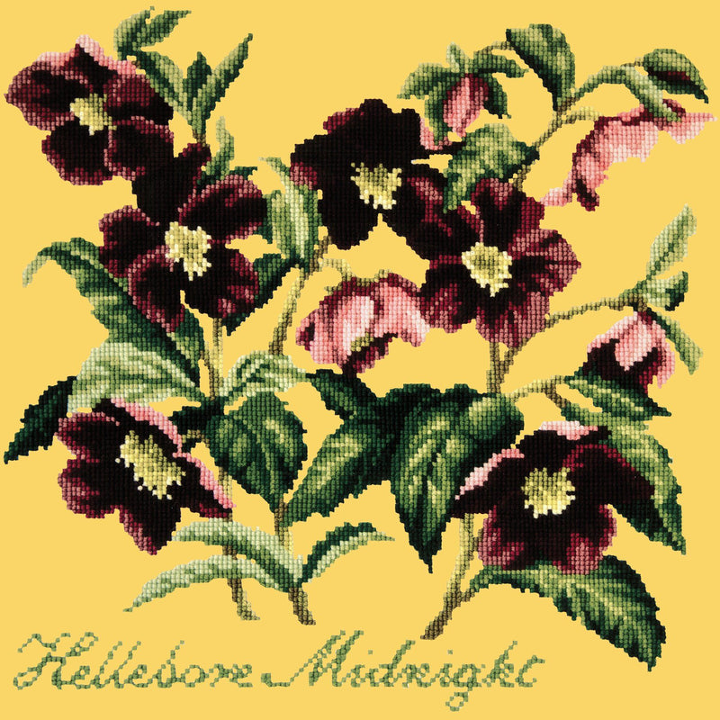 Hellebore Midnight Needlepoint Kit Elizabeth Bradley Design Sunflower Yellow