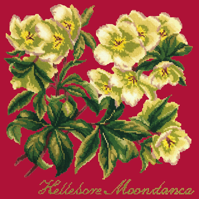 Hellebore Moondance Needlepoint Kit Elizabeth Bradley Design Bright Red