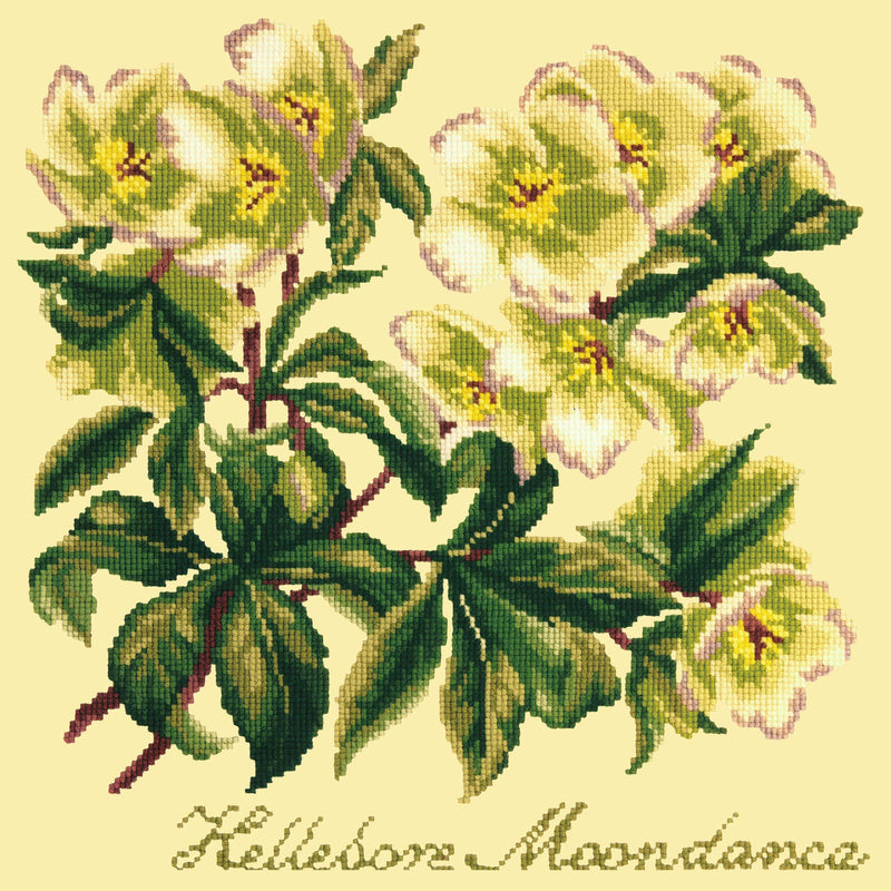 Hellebore Moondance Needlepoint Kit Elizabeth Bradley Design Butter Yellow