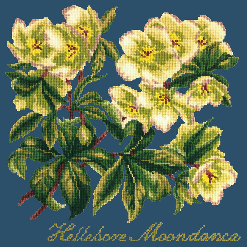 Hellebore Moondance Needlepoint Kit Elizabeth Bradley Design Dark Blue