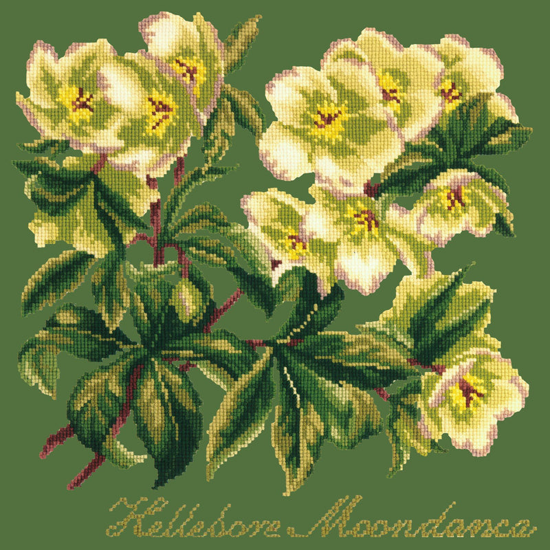 Hellebore Moondance Needlepoint Kit Elizabeth Bradley Design Dark Green