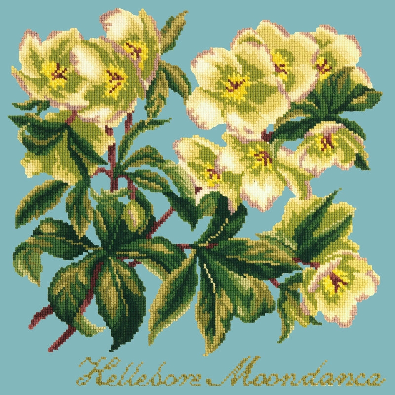 Hellebore Moondance Needlepoint Kit Elizabeth Bradley Design Duck Egg Blue
