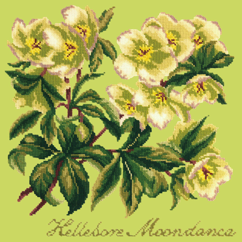 Hellebore Moondance Needlepoint Kit Elizabeth Bradley Design Pale Lime