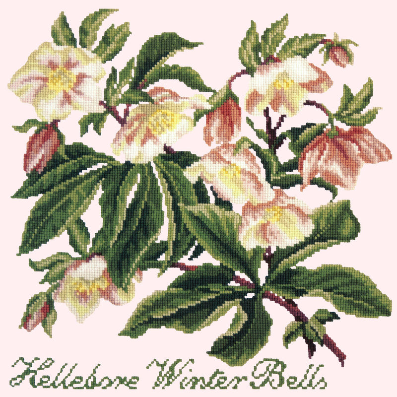 Hellebore Winter Bells Needlepoint Kit Elizabeth Bradley Design Cream