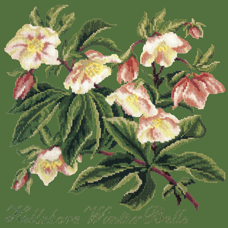 Hellebore Winter Bells Needlepoint Kit Elizabeth Bradley Design Dark Green
