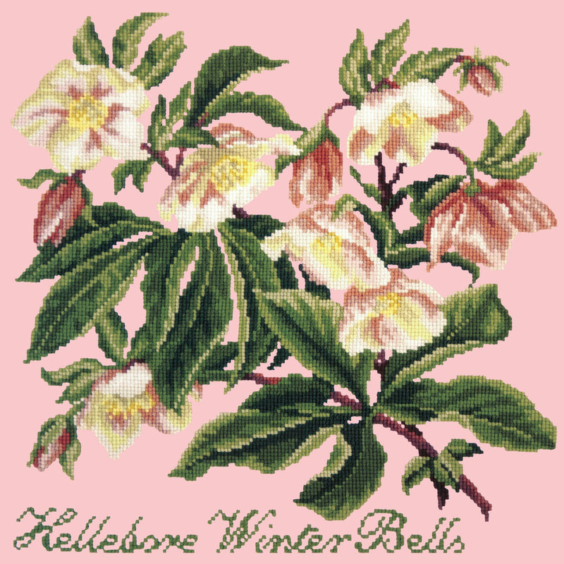 Hellebore Winter Bells Needlepoint Kit Elizabeth Bradley Design Pale Rose