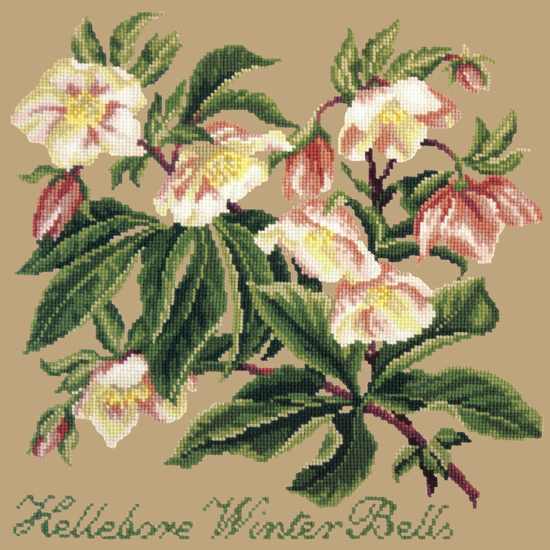 Hellebore Winter Bells Needlepoint Kit Elizabeth Bradley Design Sand