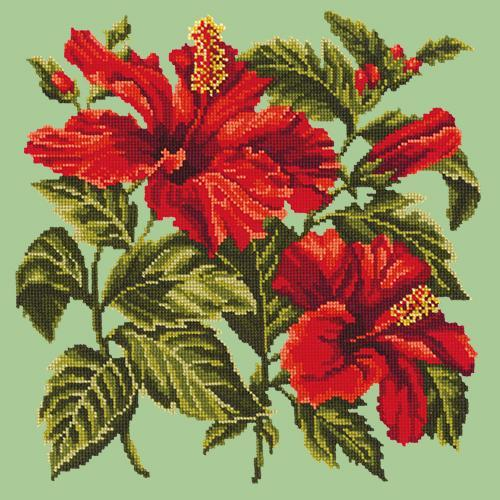 Hibiscus Needlepoint Kit Elizabeth Bradley Design Pale Green