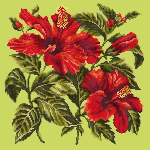 Hibiscus Needlepoint Kit Elizabeth Bradley Design Pale Lime