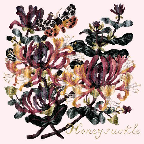 Honeysuckle Needlepoint Kit Elizabeth Bradley Design Cream
