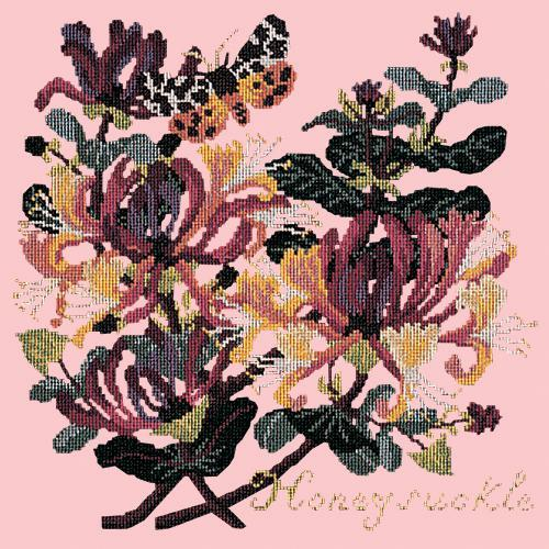 Honeysuckle Needlepoint Kit Elizabeth Bradley Design Pale Rose