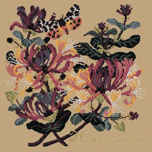 Honeysuckle Needlepoint Kit Elizabeth Bradley Design Sand