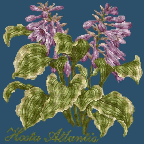 Hosta Atlantis Needlepoint Kit Elizabeth Bradley Design Dark Blue