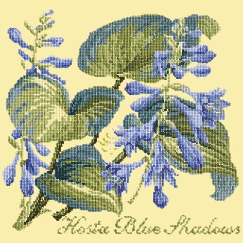 Hosta Blue Shadows Needlepoint Kit Elizabeth Bradley Design Butter Yellow