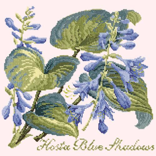 Hosta Blue Shadows Needlepoint Kit Elizabeth Bradley Design Cream