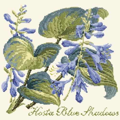 Hosta Blue Shadows Needlepoint Kit Elizabeth Bradley Design Winter White