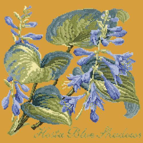 Hosta Blue Shadows Needlepoint Kit Elizabeth Bradley Design Yellow