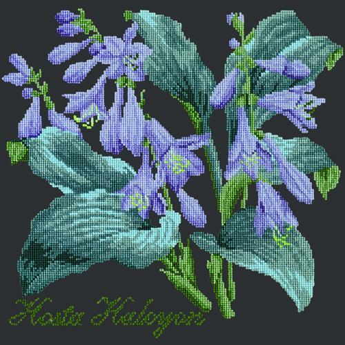 Hosta Halcyon Needlepoint Kit Elizabeth Bradley Design Black