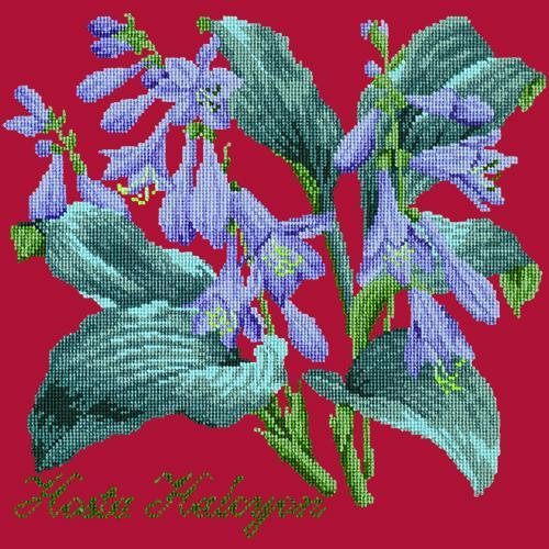 Hosta Halcyon Needlepoint Kit Elizabeth Bradley Design Bright Red