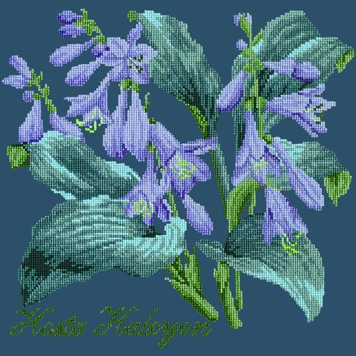 Hosta Halcyon Needlepoint Kit Elizabeth Bradley Design Dark Blue