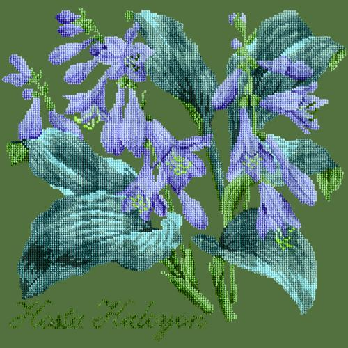 Hosta Halcyon Needlepoint Kit Elizabeth Bradley Design Dark Green