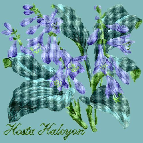 Hosta Halcyon Needlepoint Kit Elizabeth Bradley Design Duck Egg Blue