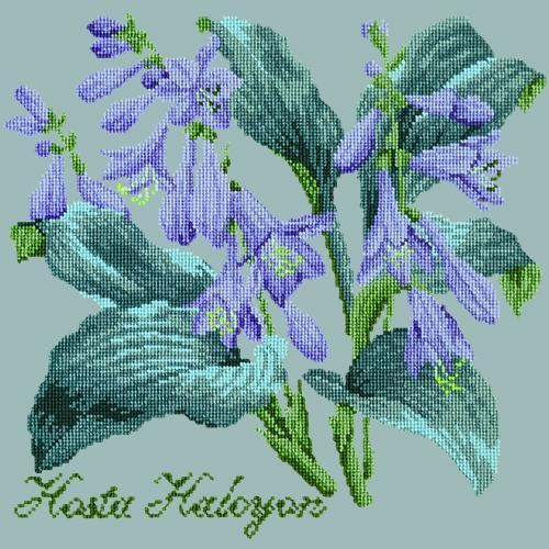 Hosta Halcyon Needlepoint Kit Elizabeth Bradley Design Pale Blue