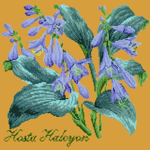 Hosta Halcyon Needlepoint Kit Elizabeth Bradley Design Yellow