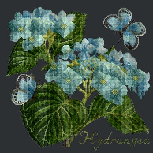 Hydrangea Needlepoint Kit Elizabeth Bradley Design Black
