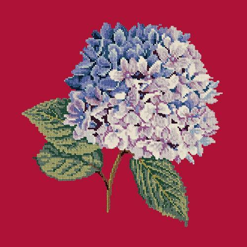 Hydrangea Needlepoint Kit Elizabeth Bradley Design Bright Red
