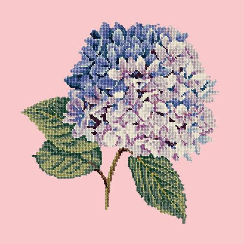 Hydrangea Needlepoint Kit Elizabeth Bradley Design Pale Rose