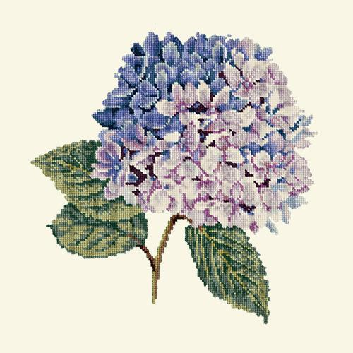 Hydrangea Needlepoint Kit Elizabeth Bradley Design Winter White