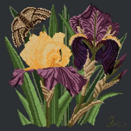 Iris Needlepoint Kit Elizabeth Bradley Design Black
