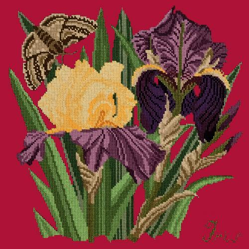 Iris Needlepoint Kit Elizabeth Bradley Design Bright Red