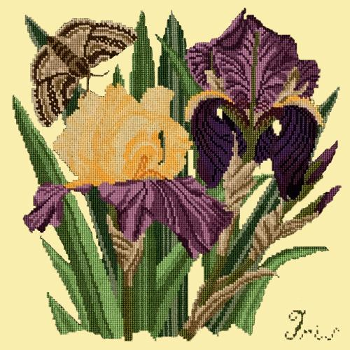 Iris Needlepoint Kit Elizabeth Bradley Design Butter Yellow
