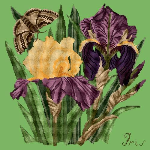 Iris Needlepoint Kit Elizabeth Bradley Design Grass Green