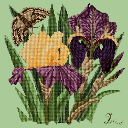 Iris Needlepoint Kit Elizabeth Bradley Design Pale Green